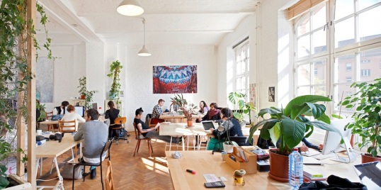 agora-Co-working-Pullover-copy.jpg