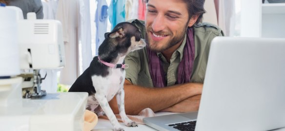 dog-friendly-office-299e5de0