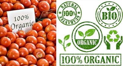 diferencia-entre-natural-y-organico-2